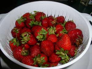 Baldwinsville_berries